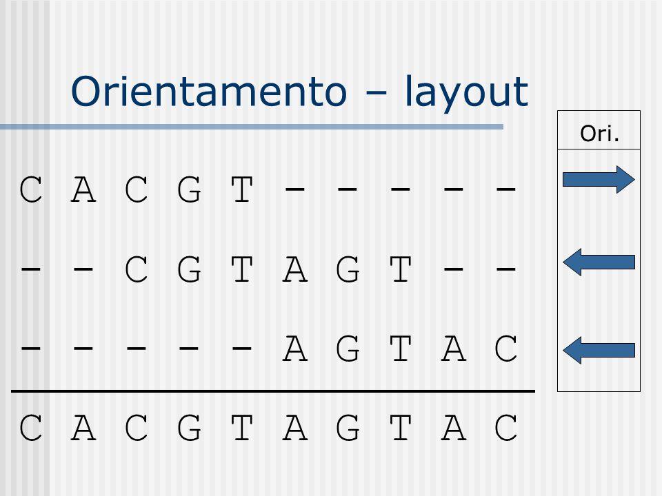 Orientamento – layout C A C G T - - - - - - - C G T A G T - - - - - - - A G T A C C A C G T A G T A C Ori.