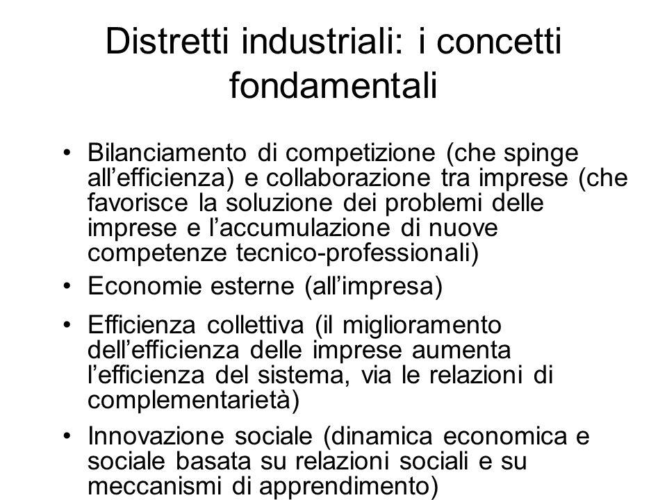 Distretti industriali: i concetti fondamentali Bilanciamento di competizione (che spinge all'efficienza) e collaborazione tra imprese (che favorisce la soluzione dei problemi delle imprese e l'accumulazione di nuove competenze tecnico-professionali) Economie esterne (all'impresa) Efficienza collettiva (il miglioramento dell'efficienza delle imprese aumenta l'efficienza del sistema, via le relazioni di complementarietà) Innovazione sociale (dinamica economica e sociale basata su relazioni sociali e su meccanismi di apprendimento)