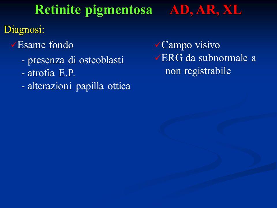 Retinite pigmentosa AD, AR, XL Diagnosi: Esame fondo - presenza di osteoblasti - atrofia E.P. - alterazioni papilla ottica Campo visivo ERG da subnorm