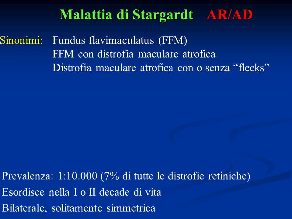 "Malattia di Stargardt AR/AD Sinonimi:Fundus flavimaculatus (FFM) FFM con distrofia maculare atrofica Distrofia maculare atrofica con o senza ""flecks"""