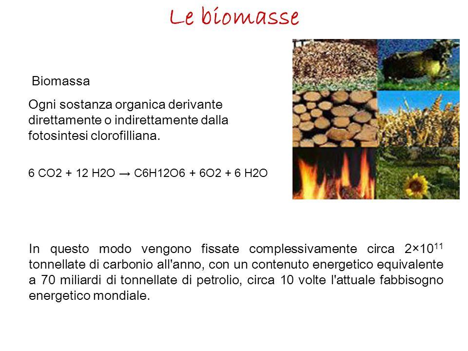 Le biomasse Biomassa Ogni sostanza organica derivante direttamente o indirettamente dalla fotosintesi clorofilliana. 6 CO2 + 12 H2O → C6H12O6 + 6O2 +