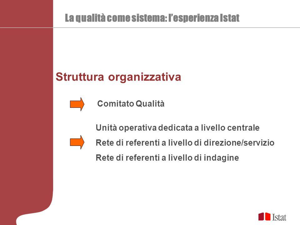 La qualità come sistema: l'esperienza Istat Struttura organizzativa Comitato Qualità Unità operativa dedicata a livello centrale Rete di referenti a livello di direzione/servizio Rete di referenti a livello di indagine