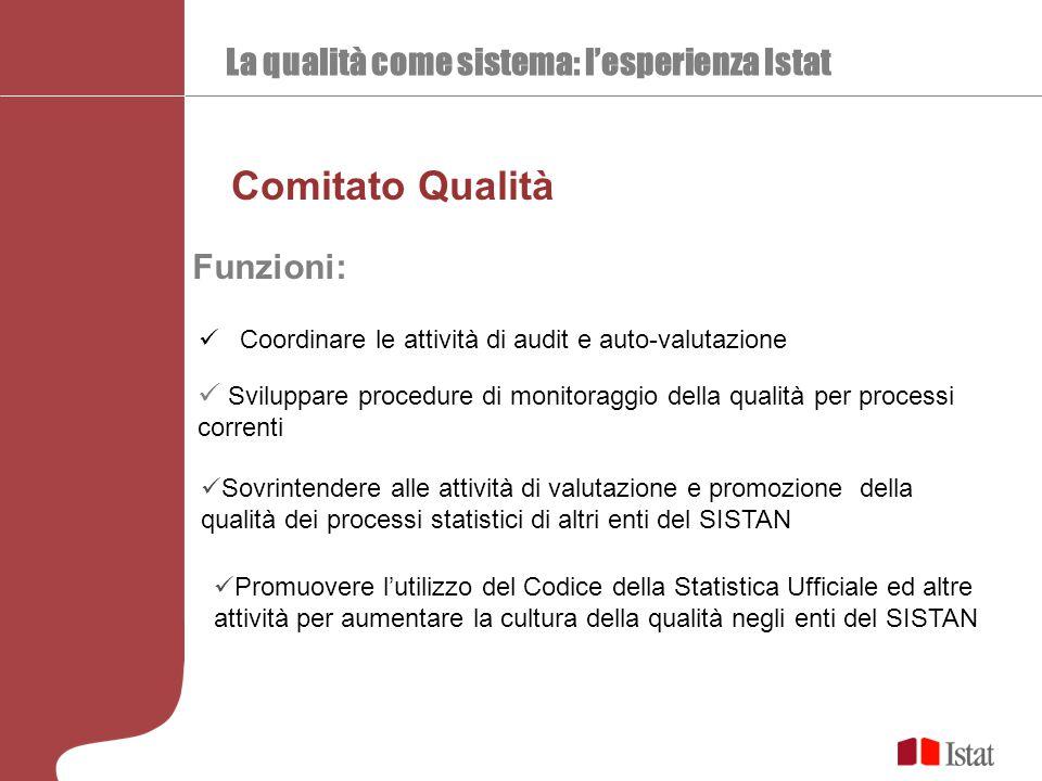 La qualità come sistema: l'esperienza Istat Comitato Qualità Coordinare le attività di audit e auto-valutazione Funzioni: Sviluppare procedure di moni