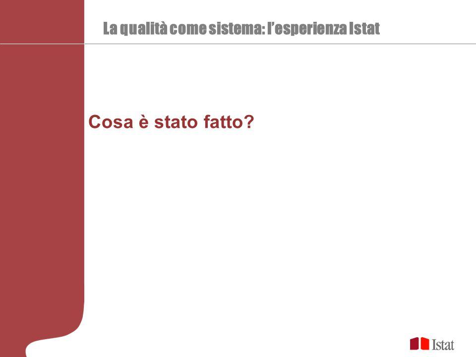 La qualità come sistema: l'esperienza Istat Cosa è stato fatto
