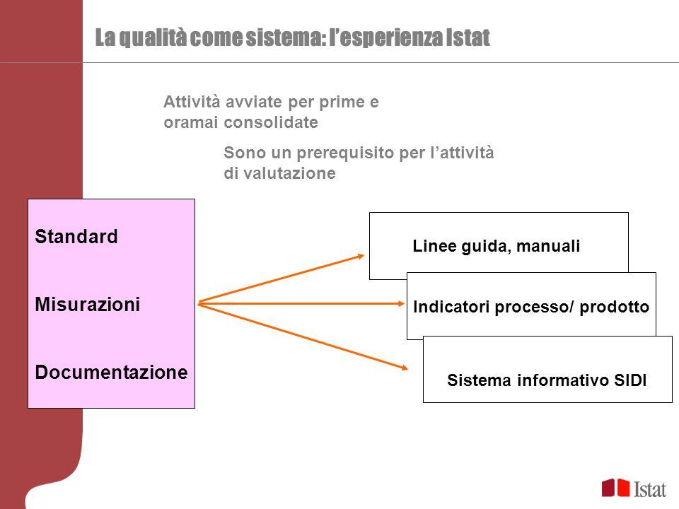 La qualità come sistema: l'esperienza Istat Standard Misurazioni Documentazione Sono un prerequisito per l'attività di valutazione Attività avviate per prime e oramai consolidate Linee guida, manuali Indicatori processo/ prodotto Sistema informativo SIDI