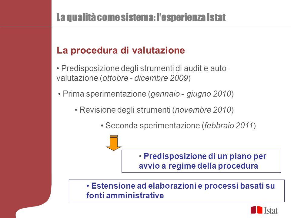La qualità come sistema: l'esperienza Istat La procedura di valutazione Predisposizione degli strumenti di audit e auto- valutazione (ottobre - dicemb