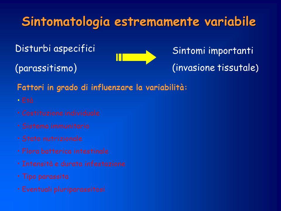 eosinofili a leucocitos i anemia leucopeni a linfopenia