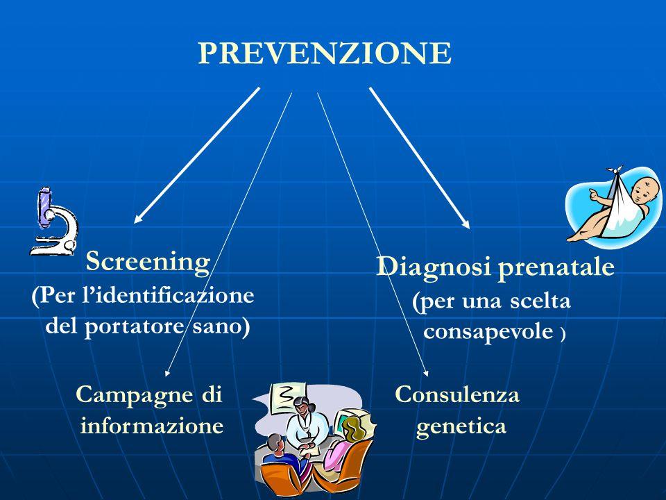 PREVENZIONE Screening (Per l'identificazione del portatore sano) Diagnosi prenatale (per una scelta consapevole ) Campagne di informazione Consulenza