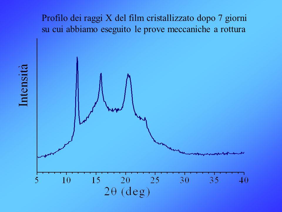 Profilo dei raggi X del film cristallizzato dopo 7 giorni su cui abbiamo eseguito le prove meccaniche a rottura