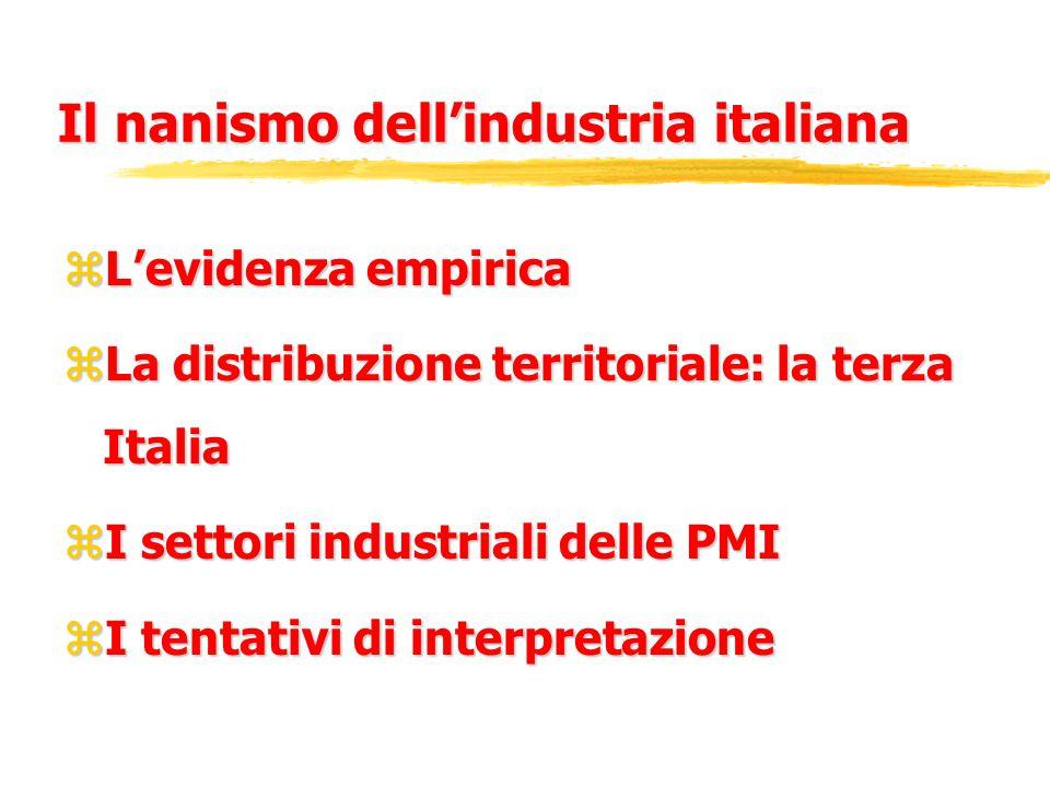Il nanismo dell'industria italiana zL'evidenza empirica zLa distribuzione territoriale: la terza Italia zI settori industriali delle PMI zI tentativi di interpretazione
