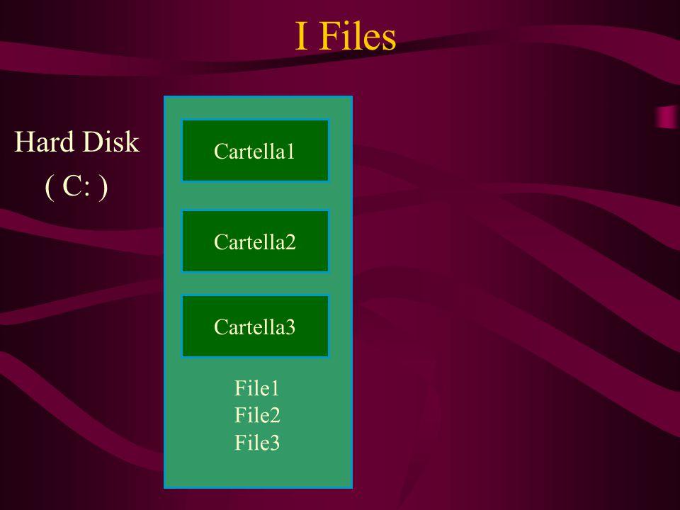 File1 File2 File3 I Files Hard Disk ( C: ) Cartella1 Cartella3 Cartella2