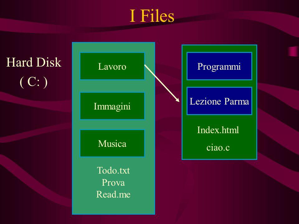 Programmi Todo.txt Prova Read.me I Files Hard Disk ( C: ) Lavoro Musica Immagini Programmi Lezione Parma Index.html ciao.c