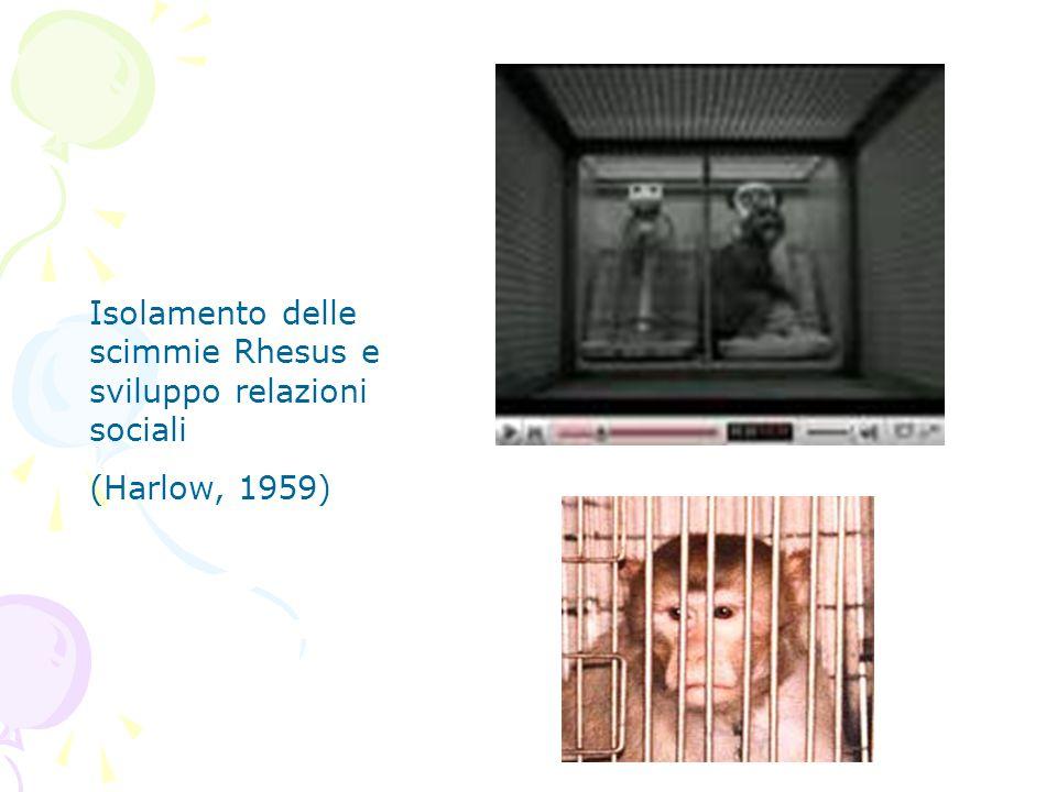 Isolamento delle scimmie Rhesus e sviluppo relazioni sociali (Harlow, 1959)
