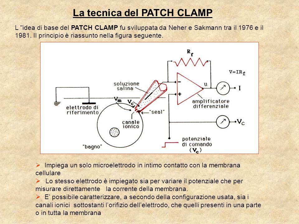 La tecnica del PATCH CLAMP  Impiega un solo microelettrodo in intimo contatto con la membrana cellulare  Lo stesso elettrodo è impiegato sia per variare il potenziale che per misurare direttamente la corrente della membrana.