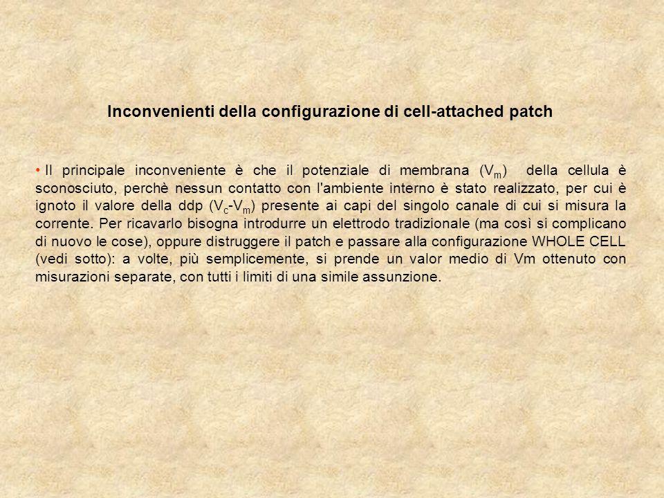 Inconvenienti della configurazione di cell-attached patch Il principale inconveniente è che il potenziale di membrana (V m ) della cellula è sconosciuto, perchè nessun contatto con l ambiente interno è stato realizzato, per cui è ignoto il valore della ddp (V c -V m ) presente ai capi del singolo canale di cui si misura la corrente.