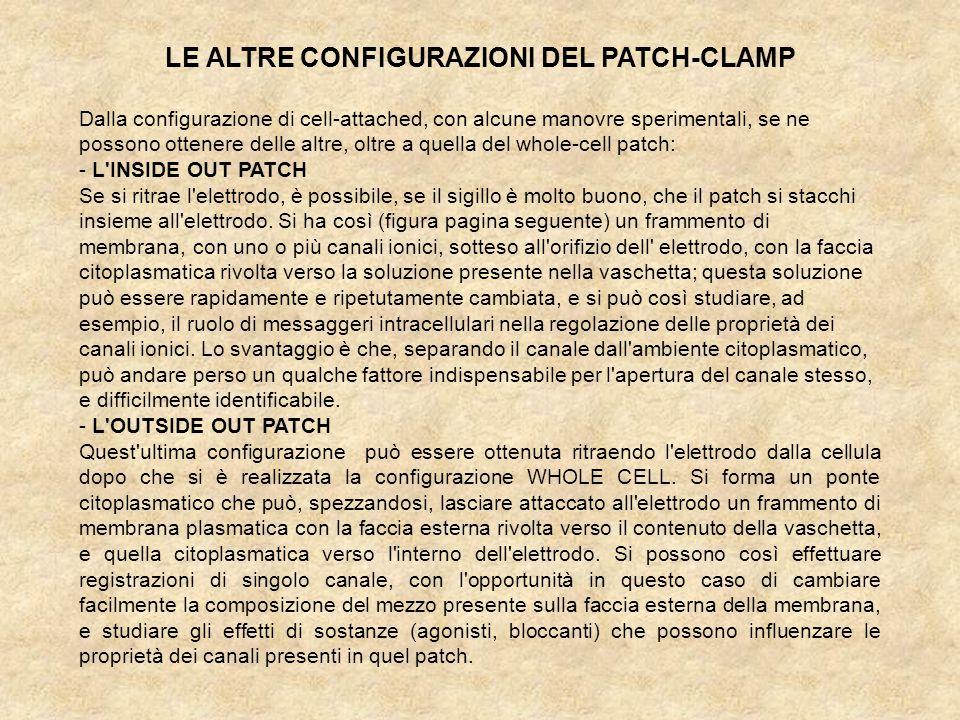 LE ALTRE CONFIGURAZIONI DEL PATCH-CLAMP Dalla configurazione di cell-attached, con alcune manovre sperimentali, se ne possono ottenere delle altre, oltre a quella del whole-cell patch: - L INSIDE OUT PATCH Se si ritrae l elettrodo, è possibile, se il sigillo è molto buono, che il patch si stacchi insieme all elettrodo.