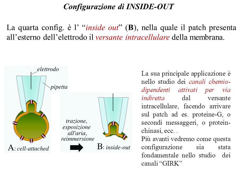 L'outside-out è molto utile per studiare le correnti di singolo canale date dai recettori-canale, come ad esempio il recettore nicotinico per l'acetilcolina …