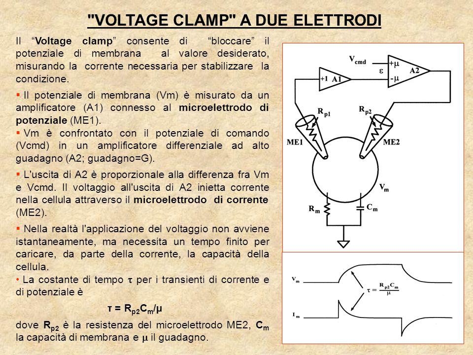 VOLTAGE CLAMP A DUE ELETTRODI Il Voltage clamp consente di bloccare il potenziale di membrana al valore desiderato, misurando la corrente necessaria per stabilizzare la condizione.