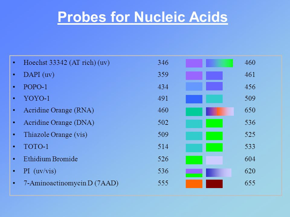 Hoechst 33342 (AT rich) (uv)346460 DAPI (uv)359461 POPO-1 434456 YOYO-1 491509 Acridine Orange (RNA) 460650 Acridine Orange (DNA) 502536 Thiazole Orange (vis)509525 TOTO-1514533 Ethidium Bromide526604 PI (uv/vis)536620 7-Aminoactinomycin D (7AAD) 555655 Probes for Nucleic Acids