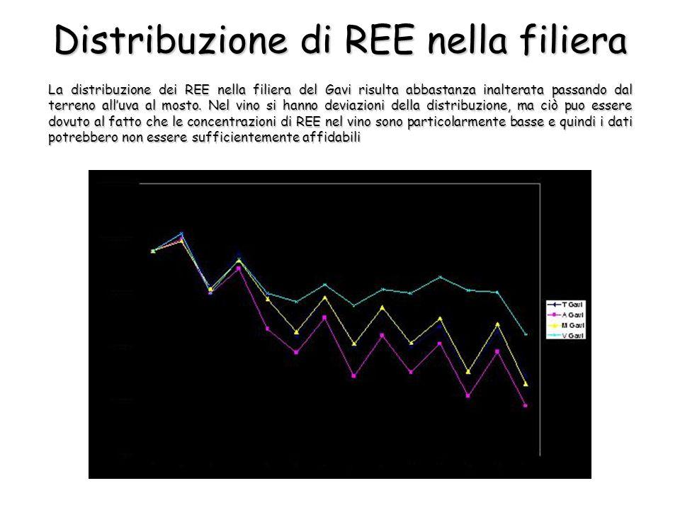 La distribuzione dei REE nella filiera del Gavi risulta abbastanza inalterata passando dal terreno all'uva al mosto.