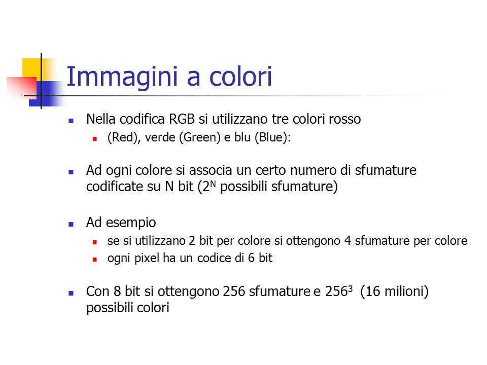 Immagini a colori Nella codifica RGB si utilizzano tre colori rosso (Red), verde (Green) e blu (Blue): Ad ogni colore si associa un certo numero di sfumature codificate su N bit (2 N possibili sfumature) Ad esempio se si utilizzano 2 bit per colore si ottengono 4 sfumature per colore ogni pixel ha un codice di 6 bit Con 8 bit si ottengono 256 sfumature e 256 3 (16 milioni) possibili colori