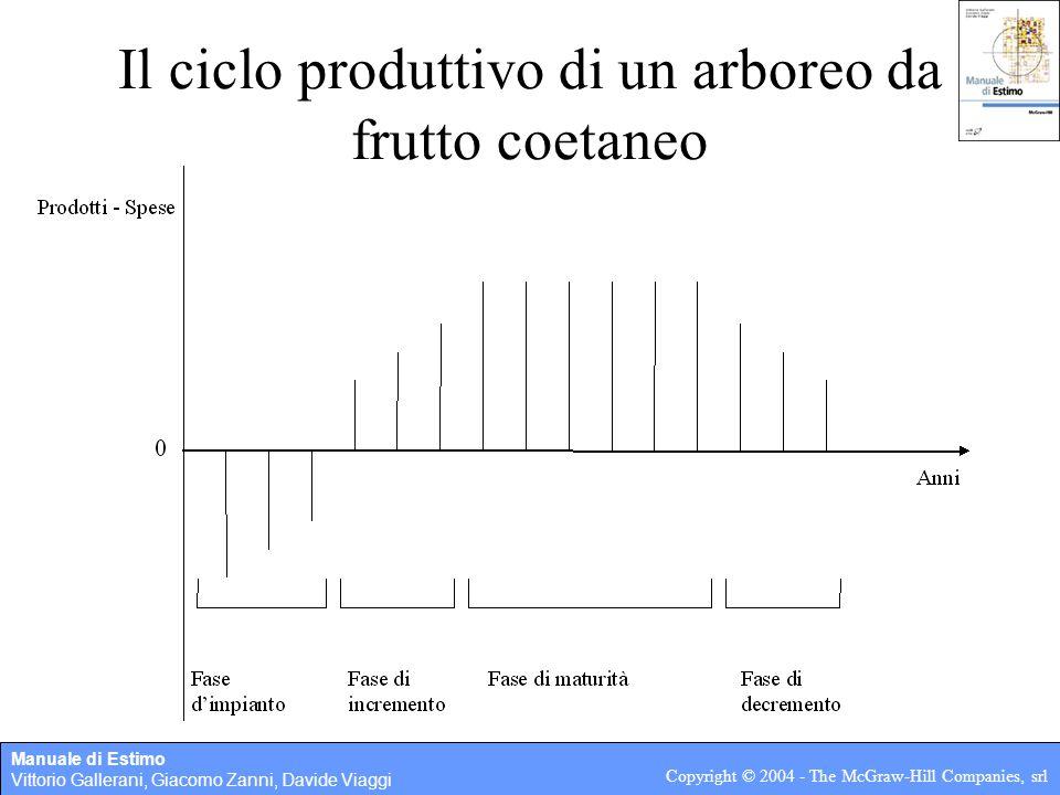 Manuale di Estimo Vittorio Gallerani, Giacomo Zanni, Davide Viaggi Copyright © 2004 - The McGraw-Hill Companies, srl 3.2 Sistemi arborei misti