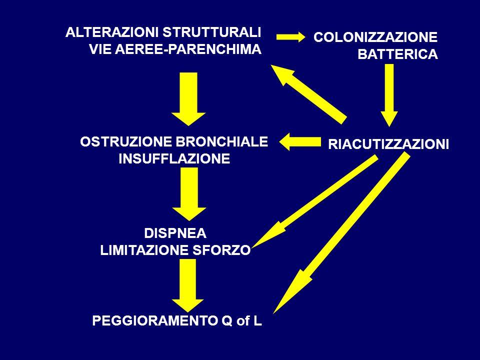 ALTERAZIONI STRUTTURALI VIE AEREE-PARENCHIMA COLONIZZAZIONE BATTERICA RIACUTIZZAZIONI OSTRUZIONE BRONCHIALE INSUFFLAZIONE DISPNEA LIMITAZIONE SFORZO PEGGIORAMENTO Q of L