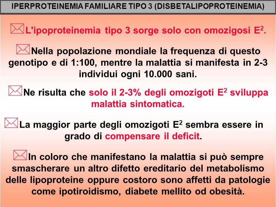 * L'ipoproteinemia tipo 3 sorge solo con omozigosi E 2. IPERPROTEINEMIA FAMILIARE TIPO 3 (DISBETALIPOPROTEINEMIA) * Ne risulta che solo il 2-3% degli