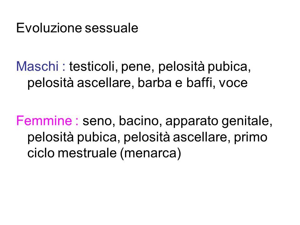Evoluzione sessuale Maschi : testicoli, pene, pelosità pubica, pelosità ascellare, barba e baffi, voce Femmine : seno, bacino, apparato genitale, pelo