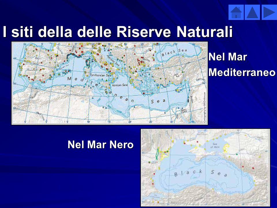 La protezione della natura Mar MediterraneoMar Nero  Nel Mediterraneo sono presenti 122 siti SPA (specially protected area) 47 dei quali sono in aree