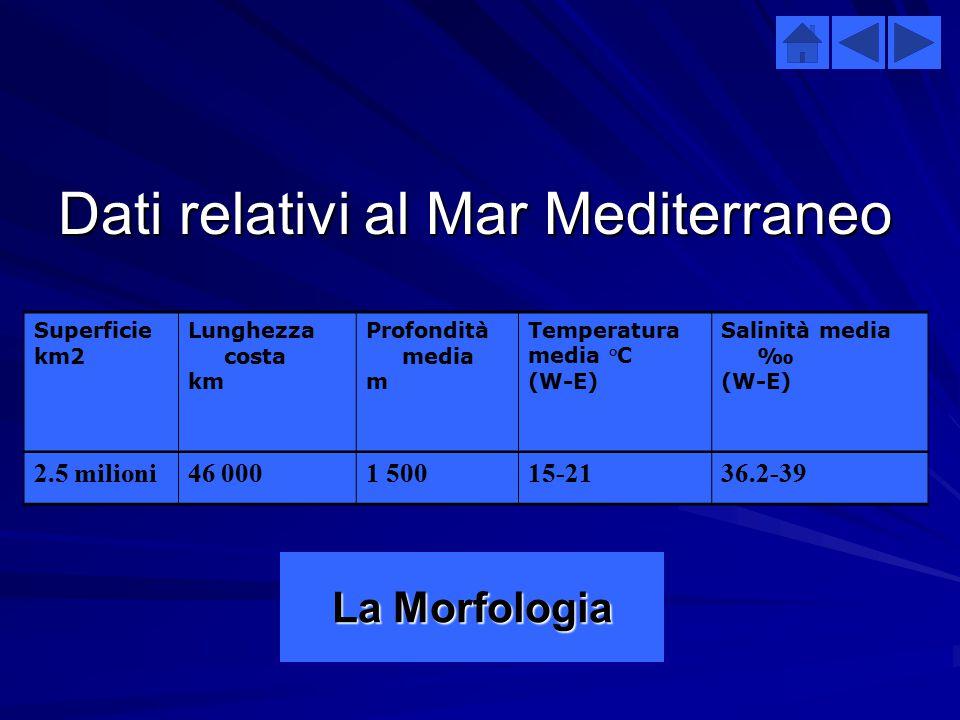  La valutazione dell'inquinamento nel Mediterraneo, obiettivo primario del piano d'azione del Mediterraneo, è stato superato dalle misure per il cont