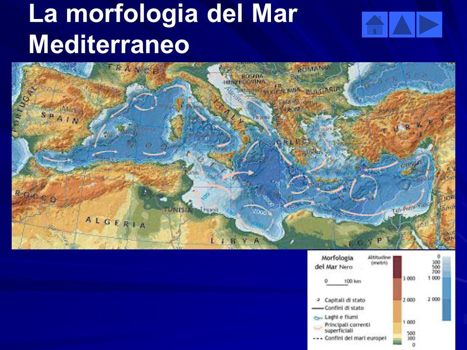 Superficie km2 Lunghezza costa km Profondità media m Temperatura media °C (W-E) Salinità media ‰ (W-E) 2.5 milioni46 0001 50015-2136.2-39 Dati relativ