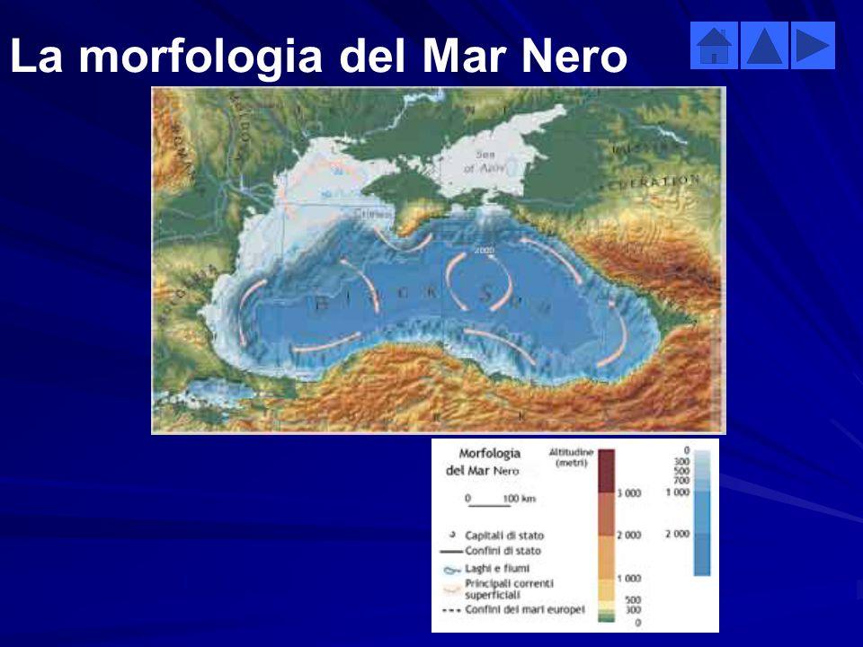 BaciniSuperficie km2 Volume km3 Lunghezza delle coste km Profondità media m (max) Temperatura media ºC (max) Salinità ‰ media (max) Mar Nero 423 00054