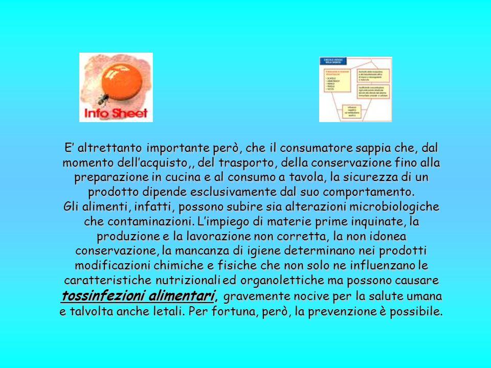 L'Unione Europea ha definito un insieme di norme atte a tutelare il consumatore sui prodotti provenienti da OGM.