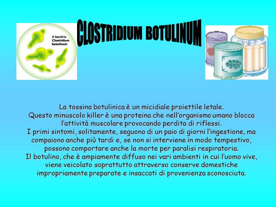 La tossina botulinica è un micidiale proiettile letale.