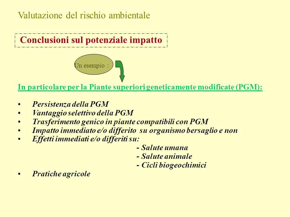 Conclusioni sul potenziale impatto In particolare per la Piante superiori geneticamente modificate (PGM): Persistenza della PGM Vantaggio selettivo de