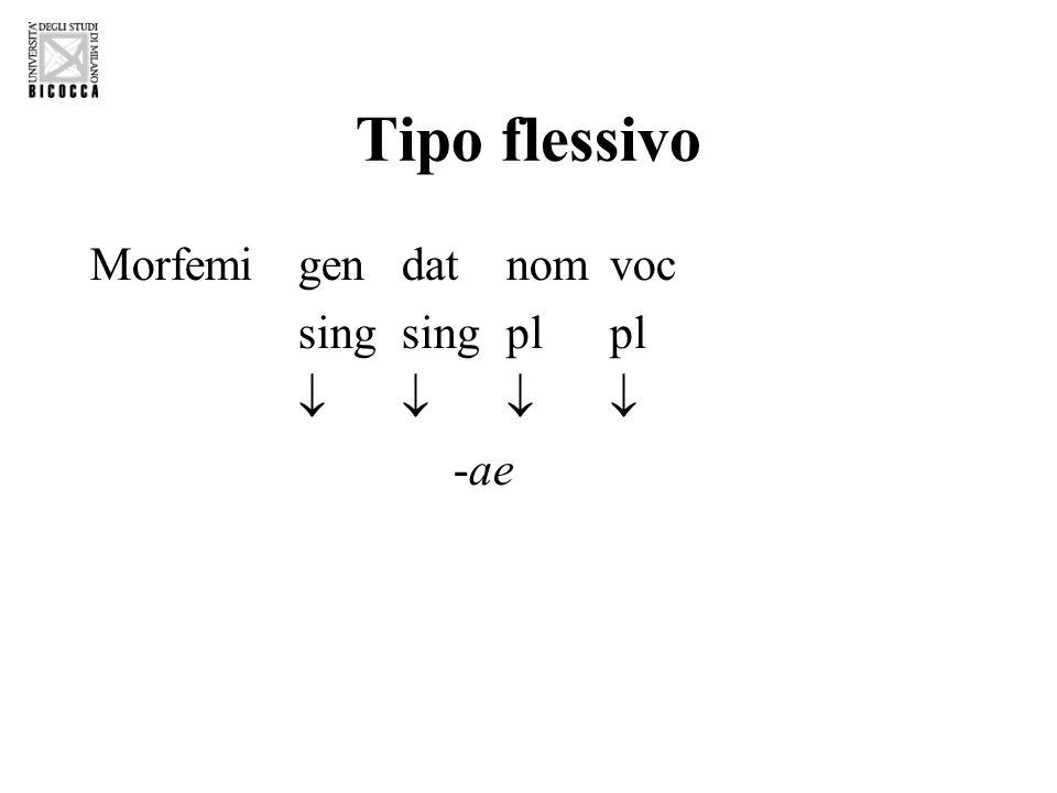Tipo introflessivo -Lingue semitiche -Radici triconsonantiche Es.