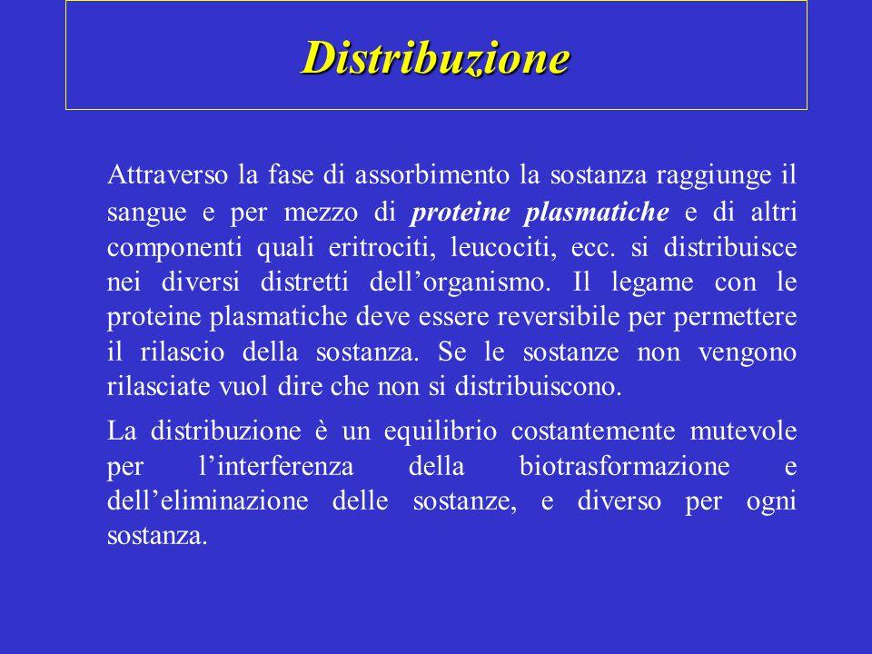 Distribuzione Attraverso la fase di assorbimento la sostanza raggiunge il sangue e per mezzo di proteine plasmatiche e di altri componenti quali eritrociti, leucociti, ecc.