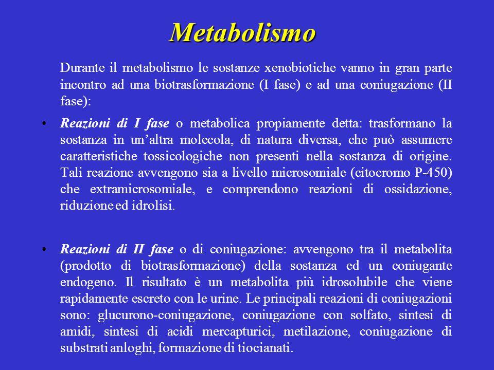 Metabolismo Durante il metabolismo le sostanze xenobiotiche vanno in gran parte incontro ad una biotrasformazione (I fase) e ad una coniugazione (II fase): Reazioni di I fase o metabolica propiamente detta: trasformano la sostanza in un'altra molecola, di natura diversa, che può assumere caratteristiche tossicologiche non presenti nella sostanza di origine.