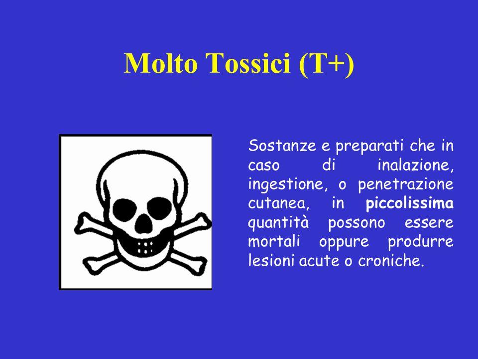 Molto Tossici (T+) Sostanze e preparati che in caso di inalazione, ingestione, o penetrazione cutanea, in piccolissima quantità possono essere mortali oppure produrre lesioni acute o croniche.