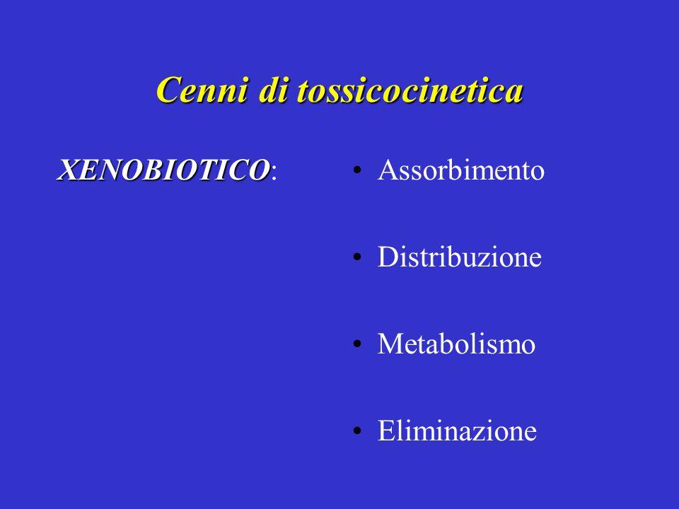 Cenni di tossicocinetica XENOBIOTICO XENOBIOTICO:Assorbimento Distribuzione Metabolismo Eliminazione