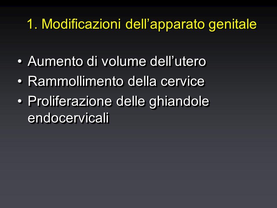 1. Modificazioni dell'apparato genitale Aumento di volume dell'uteroAumento di volume dell'utero Rammollimento della cerviceRammollimento della cervic