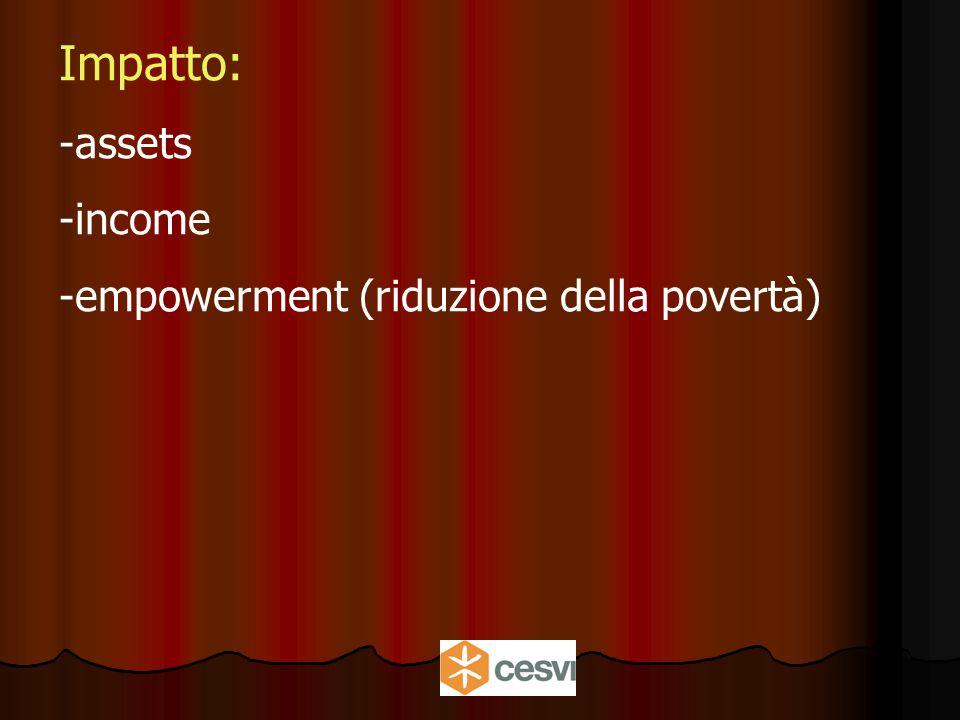 Impatto: -assets -income -empowerment (riduzione della povertà)