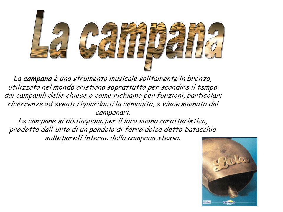 La campana è uno strumento musicale solitamente in bronzo, utilizzato nel mondo cristiano soprattutto per scandire il tempo dai campanili delle chiese o come richiamo per funzioni, particolari ricorrenze od eventi riguardanti la comunità, e viene suonato dai campanari.