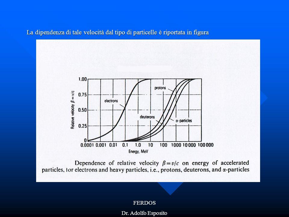 FERDOS Dr. Adolfo Esposito La dipendenza di tale velocità dal tipo di particelle è riportata in figura
