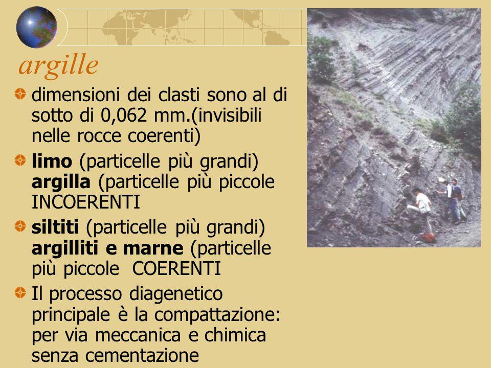 argille dimensioni dei clasti sono al di sotto di 0,062 mm.(invisibili nelle rocce coerenti) limo (particelle più grandi) argilla (particelle più picc