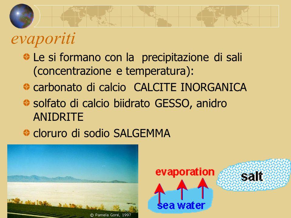 evaporiti Le si formano con la precipitazione di sali (concentrazione e temperatura): carbonato di calcio CALCITE INORGANICA solfato di calcio biidrat