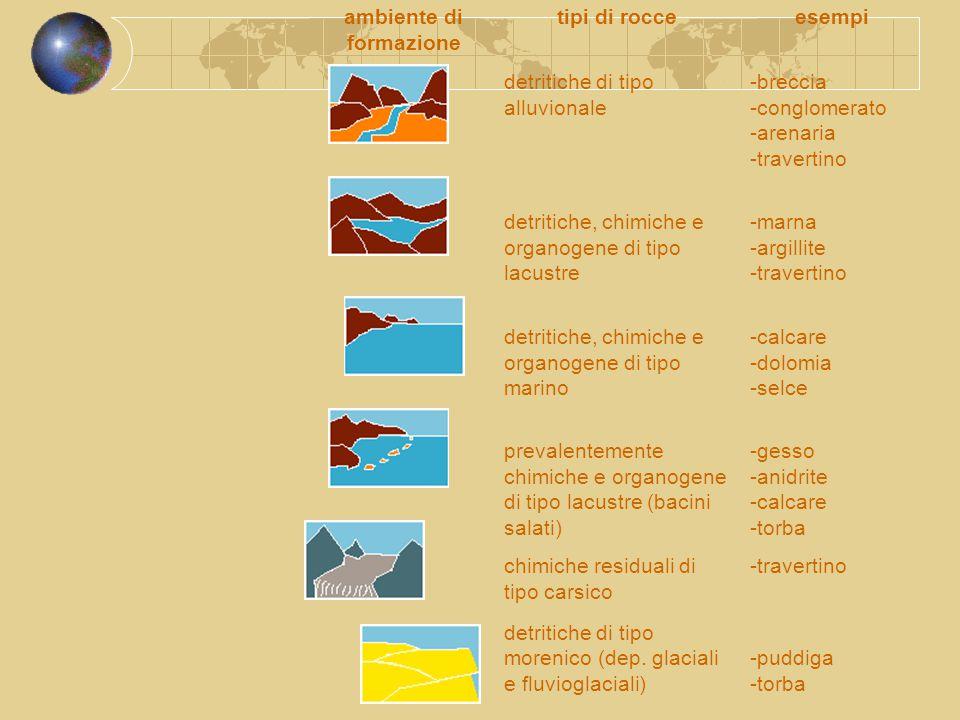 ambiente di formazione tipi di rocceesempi detritiche di tipo alluvionale -breccia -conglomerato -arenaria -travertino detritiche, chimiche e organoge