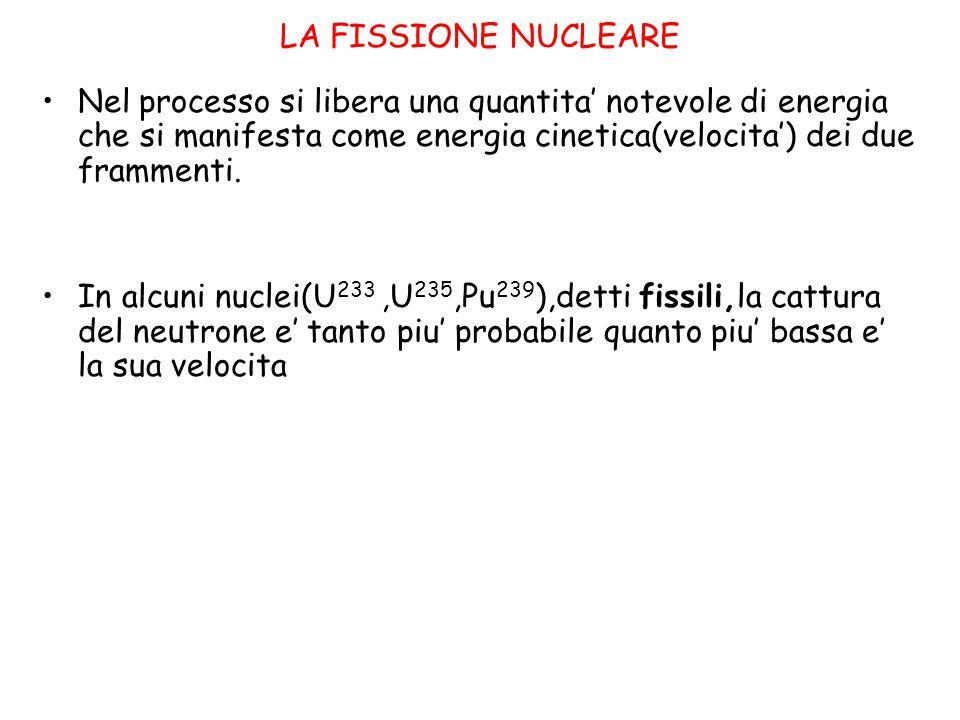 LA FISSIONE NUCLEARE Nel processo si libera una quantita' notevole di energia che si manifesta come energia cinetica(velocita') dei due frammenti. In