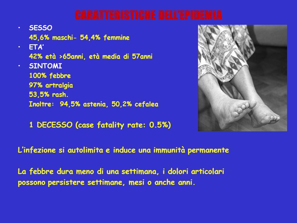 CARATTERISTICHE DELL'EPIDEMIA SESSO 45,6% maschi- 54,4% femmine ETA' 42% età >65anni, età media di 57anni SINTOMI 100% febbre 97% artralgia 53,5% rash.
